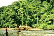 Talamanca Range-La Amistad Reserves